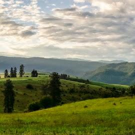 Idaho Sunrise Panorama by Evan Jones - Landscapes Prairies, Meadows & Fields ( stormy, idaho, rolling hills, sunrise, prairie, panorama, cows, green grass, camas prairie )
