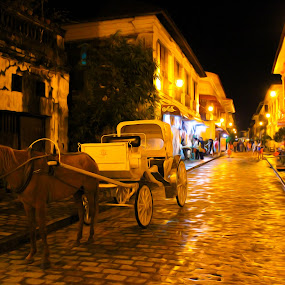 love of vigan by Diofel Dagandan - City,  Street & Park  Historic Districts ( a )