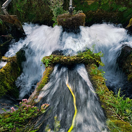 Everything passes by Andrija Vrcan - Nature Up Close Water ( water, water mill )