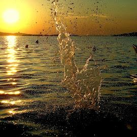 by Dolores Dubravica - Landscapes Sunsets & Sunrises