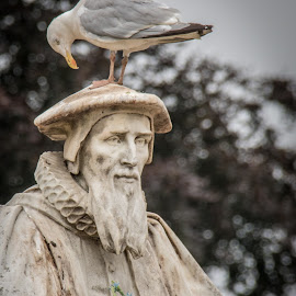 Richard Hooker Statue - Exeter by Wendy Richards - Buildings & Architecture Statues & Monuments ( bird, old, statue, pidgeon, richard hooker, devon, exeter )