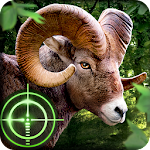Wild Hunter 3D 1.0.5 Apk
