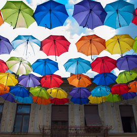 Umbrella by Maja Tomic - Artistic Objects Other Objects ( umbrella,  )