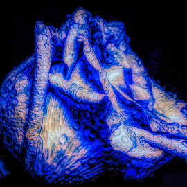 Depth Of Blue Rose by Dave Walters - Digital Art Abstract ( macro, nature, 3 d, abstract, lumix fz2500, colors )