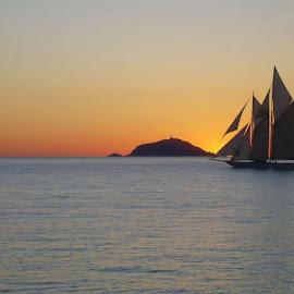 by Marco Poli - Transportation Boats