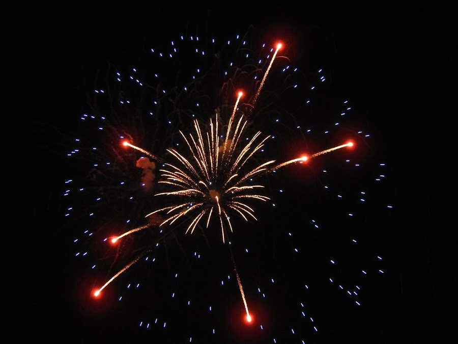 Fireworks bursting in air by Melodie Swartzbaugh - Public Holidays July 4th ( sky, sparkle, firework, night, fireworks, nobody, holiday, lights, summer,  )