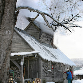 Vermont Maple Sugaring by Stephen Goodhue - Buildings & Architecture Other Exteriors ( sap, sugar house, boiling, snow, sugaring, vermont gold, vermont, maple syrup, maple )