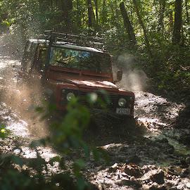 splashing mud by Annette Flottwell - Sports & Fitness Motorsports ( bosque, winch, wheels, nud, barro, fun, fango, landrover )