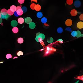 Christmas Bokeh by Sara  Ali - Abstract Patterns ( lights, decorative lights, night, christmas bokeh, bokeh )