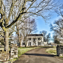 Times gone by by Angela Everett - Buildings & Architecture Homes ( old homes, tennessee, trees, architecture, landscape )