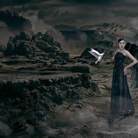 dark angel by Charles Mawa - Digital Art People ( bird, angel, digital manipulation, digital art, dark, dark background, digital )