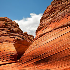 Twin Buttes at The Wave by Dale Kesel - Landscapes Caves & Formations ( wilderness area, coyote buttes, desert, northern arizona, buttes, southwest, paria, iconic southwest images )