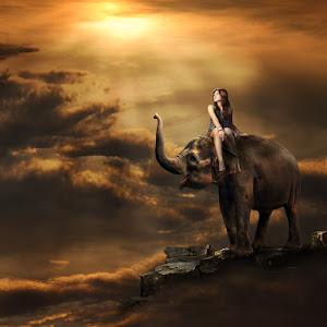 naik-gajah.jpg