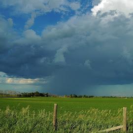 Thunder on the Horizon by Ron Keller - Landscapes Weather ( thunderstorm, weather, south dakota, landscape, storm, rain )
