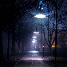 Fog on Farnam by Eric Anderson - City,  Street & Park  Street Scenes ( lights, omaha, fog, street, lamp, cit, dreary, nebraska, sidewalk )