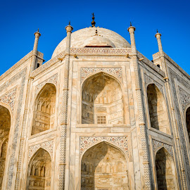 Taj Mahal by Soham Bhattacharya - Buildings & Architecture Statues & Monuments ( beautiful, taj mahal, agra, india, seven wonders )
