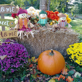 Fall Lawn Ornaments by Karen Carter Goforth - Public Holidays Thanksgiving ( decor, autumn, pumpkins, hay, fall, mums, flowers,  )