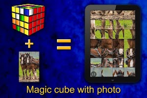 Screenshot of Logic puzzles