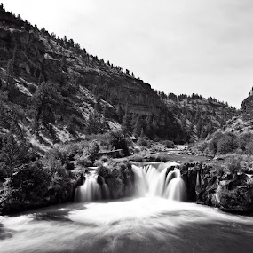 Steelhead Falls by David Benedict - Landscapes Waterscapes ( oregon, black and white, waterscape, waterfall, landscape,  )