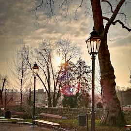 by Gordana Trošić-Kliska - Instagram & Mobile Android ( winter, park, sunset, street, zagreb )