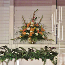 by Terry Linton - Wedding Details