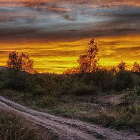 The fiery sky by Dragan Nikolić - Landscapes Sunsets & Sunrises (  )