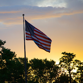 Old Glory by Richard States - Public Holidays July 4th ( flag, patriotic, july 4th, patriotism, usa )