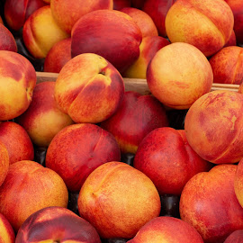 Nectarines by Andrew Moore - Food & Drink Fruits & Vegetables