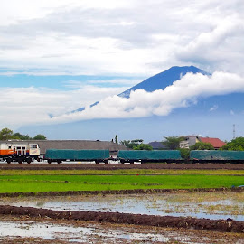 Train And Scenery by Muhammad Nasrul Khaeruddin - Transportation Trains ( bali, mountain, indonesia tourism, jakarta, landscape, field, train station, volcano, yogyakarta, indonesia, volcanoes, train, landscape photography, java, landscapes, trains, fields )