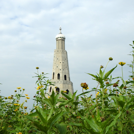 Standing Tall amongst wild flowers by Vivek Sharma - Buildings & Architecture Statues & Monuments ( fateh burj, vivekclix, tower, victory tower, vivek, chapparchiri, historical, wild flowers )