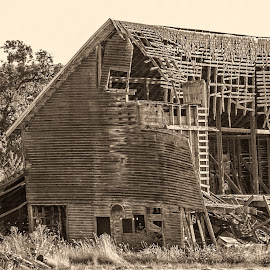 by Judy Heitzman - Buildings & Architecture Decaying & Abandoned ( abandon barn )