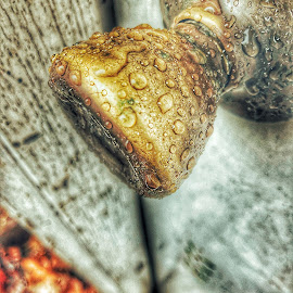 by Theodore Kemp - Abstract Water Drops & Splashes ( #macro #doorknob #waterdrops #spiritual #christian )