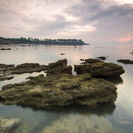 Home land by Nur Sugianto - Landscapes Beaches
