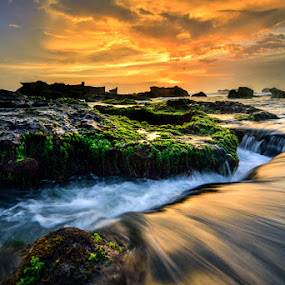 Flowing in by Raung Binaia - Landscapes Waterscapes ( water, bali, nature, waterscape, sunset, green, sunrise, seascape, beach, landscape, mengening, rocks,  )