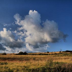 by Suzana Svečnjak - Landscapes Prairies, Meadows & Fields