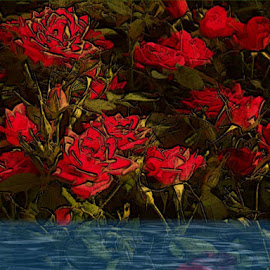Along the Creek by Nancy Bowen - Digital Art Things ( water, red, creek, flowers )