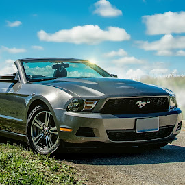Mustang 2010 - Road Ready by T Sco - Transportation Automobiles ( field, car, mustang, automotive, road trip, vehicle, auto, 2010, road, steam )