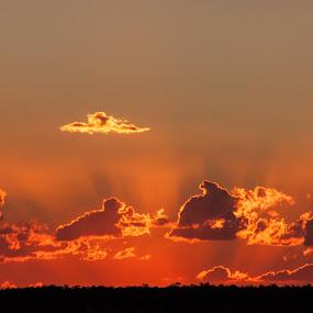 Sunset by Sam De Block - Landscapes Sunsets & Sunrises ( sky, red, nature, sunset, fire )