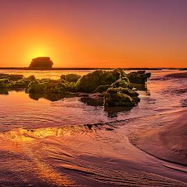 Sunset at Pulpit Rock by Keith Walmsley - Landscapes Sunsets & Sunrises ( shore, ripples, sunset, australia, moss, victoria, landscape, rocks, coast )