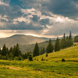 Mountain summer landscape by Constantin D - Landscapes Travel ( mountain nature summer sunshine trees )