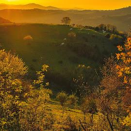 Toscana by Cristian Manolache - Landscapes Sunsets & Sunrises ( hills, toscana, sunset, landscape, photography )