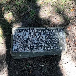 This tree is dedicated to the memory ofSimon BolivarLiberator of Venezuela, Colombia, Ecuador, Peru, Bolivia and Panama, on the bicentennial of his birth (1783-1983)Venezuela Students Association