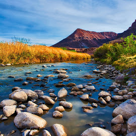 Down To The river by Kent Moody - Landscapes Deserts ( big bend, rio grande, sky, texas, reeds, river )