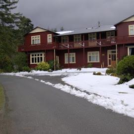 Lake Rotara Lodge by Kim Samuels - Buildings & Architecture Homes