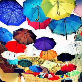 Hanging Umbrellas by Viktorija Golubić - City,  Street & Park  Street Scenes