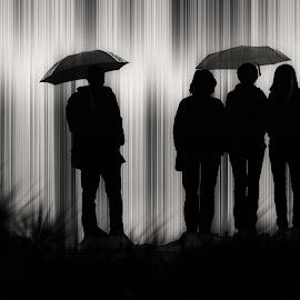 by Milanka Dimic - Digital Art People ( umbrellas, people, rain )