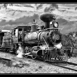 Traves Eustes and Gulf RR by James Eickman - Transportation Trains (  )