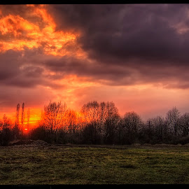 sunset near Zákupy castel by Petr Klingr - Landscapes Sunsets & Sunrises ( clouds, hdr, sunset, trees, sun )