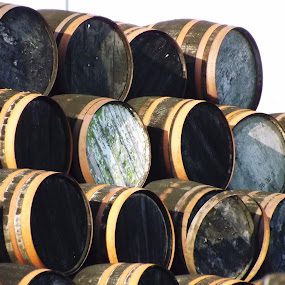 by Alan Reardon - Artistic Objects Other Objects ( menstrie, band, wood, whisky, barrel )