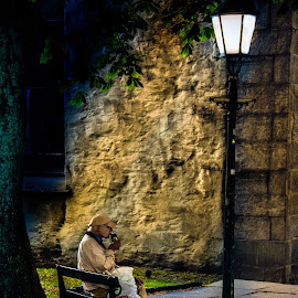 Evening Drunk by Peter Jarvis - City,  Street & Park  Street Scenes ( bench, drinking, street, lamp, lamppost, man )